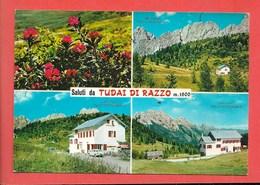 Tudai Di Razzo (BL) - Viaggiata - Andere Städte