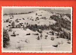 KAP-16 Barboleusaz Sur Gryon Et Bex, En Hiver. Perrochet, Non Circulé - VD Vaud
