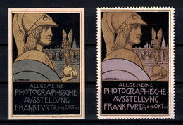 "LOT De 2 VIGNETTES (DONT NON-DENTELÉE) "" ALLGEMEINE PHOTOGRAPHISCHE AUSSTELLUNG FRANKFURT 1913 "" - Autres"