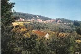 CPM - KLUISBERG - MONT De L'ENCLUS - Panorama - Mont-de-l'Enclus
