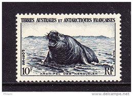 T A A F, YT 6, ** MNH. (4FV10) - Terres Australes Et Antarctiques Françaises (TAAF)