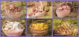 Kazakhstan 2019. Maxicard (Maximum Cards).  Kazakhstan Mushrooms. Plants. - Champignons