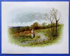CHROMO LITHOGRAPHIE   13 / 17.5  Cm... SIGNE A.S....PAYSAGE ANGLAIS ...FEMME RAMASSANT DES BRANCHAGES - Vieux Papiers
