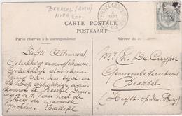 Belgie Nr 53 Beersel (Anvers) (STERSTEMPEL) Op Zichtkaart Merxplas (Colonie) - 1893-1907 Wappen