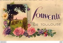 D31  SOUVENIR DE TOULOUSE - Toulouse
