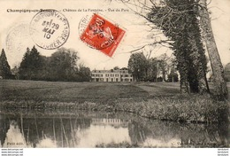 D41  CHAMPIGNY- EN- BEAUCE  Château De La Fontaine- Vue Du Parc   ..... - Frankrijk
