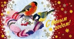 Russia 2019 Postal Stationery Card New Year Nouvel An Birds Blue Tit Bullfinch Oiseaux Oiseau - Año Nuevo