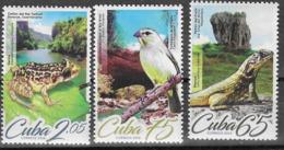 FAUNA, 2019, MNH, BIRDS, FROGS, LIZARDS,3v - Oiseaux