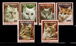MOZAMBIQUE - 1979 - Chats - YT N° 677 / 682  - **  - Série Complète - Katten