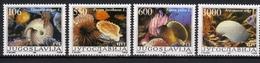 Yugoslavia,Fauna-Shells & Snails 1988.,MNH - Unused Stamps