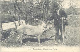 Basses Alpes - Chercheur De Truffes  (1974 ASO) - Frankreich