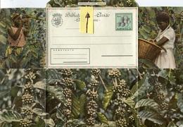 49941 Angola, Aerogramme Bilhete Carta-aviao,(fruta Pinha) Showing Coffee Pickers,Kaffeepflücker,cueilleurs De Café - Ernährung