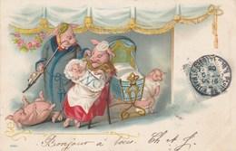 CPA Lithographiée Animal Humanisé Position Humaine Cochon Porc Pig Pigglet Nourrice Biberon  Illustrateur (2 Scans) - Varkens