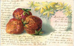 Plantes Fruits - Fraises - Botanik