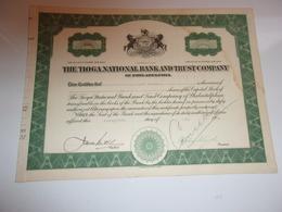 THE TIOGA NATIONAL BANK AND TRUST COMPANY (USA) - Shareholdings
