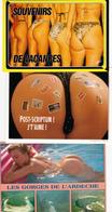 PIN-UPS / SOUVENIRS DE VACANCES - Lot 15 Cartes - Pin-Ups