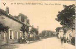 CHER 18.LA BORNE PAR HENRICHEMONT RUE DU BOURG - Autres Communes