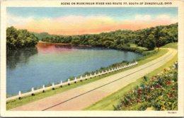 Ohio Zanesville Scene Along Muskingum River And Route 77 Curteich - Zanesville