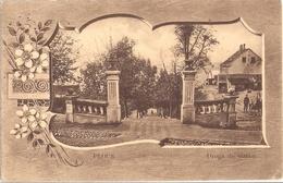 PLOCK Masowien Droga Do Statku Animee Jugendstil Gelaufen Als Feldpost 9.3.1915 Nach Wismar - Polen