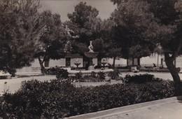 TORRE-PACHECO, MURCIA - FUENTE ORNAMENTAL EN LA PLAZA DE JOSE ANTONIO. ESPAÑA POSTAL CIRCULATED IN 1960 -LILHU - Murcia