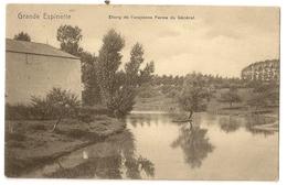 13- Grande Espinette - Etang De L'ancienne Ferme Du Général - Rhode-St-Genèse - St-Genesius-Rode