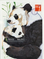 1997 ,NEVIS , FAUNA - OSOS , OSO PANDA , BEAR - Ours