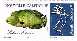 Nouvelle Caledonie New Caledonia Timbre Personnalise Timbre A Moi Prive Maurice Bunel Poisson Labre Napoleon Neuf TB - Nouvelle-Calédonie