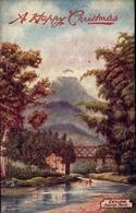 Artiste Cp Oilette, Sri Lanka Ceylon, Glückwunsch Weihnachten, Adam's Peak, Tuck 7710 - Sri Lanka (Ceylon)