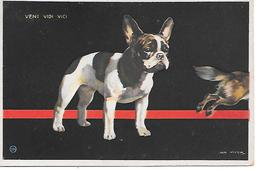 French Bulldog, Bouledogue Français, Französische Bulldogge, By Dutch Illustrator Jan Wijga - Cani