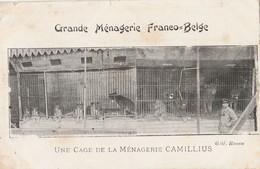 CPA  CIRQUE GRANDE MENAGERIE CAMILLIUS  FRANCO-BELGE ETAT - Cirque