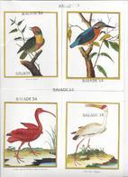 7 CPM - OISEAUX : Même Collection Toucan, Kakatoes, Lori, Tantale, Ibis Rouge, Barbu, Martin Pêcheur + 1 Offerte - Vögel