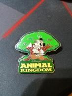 Pin's Disney N° 15745 WDW - Mickey W/Park Icon (Animal Kingdom) - Disney