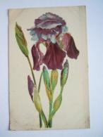 Fleur Bloem Iris Carte Gaufrée Circulée Gelopen 1911 - Flores