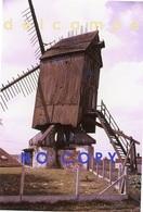 ZINGEM - Gemeente Kruisem (O.Vl.) - Molen/moulin - Historische Foto Van Meuleke 't Dal Voor De Restauratie Ca. 1960 - Lieux