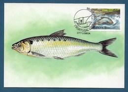 Portugal 1986   Mi.Nr. 1690 , EUROPA CEPT Natur- Und Umweltschutz - Maximum Card - Stempel CCT -5.-5.1985 - 1986