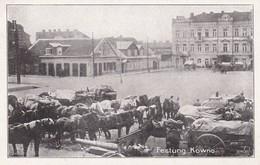 Festung Kowno - Litauen