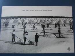 Carte Postale Le Battage Du Sel Aux Salins Du Midi - Pesca