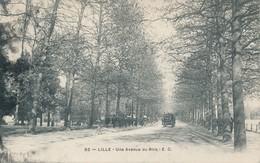 Lille EC 83 Une Avenue Du Bois Beau Plan TBE - Lille