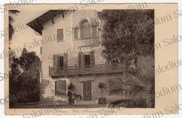 PALLANZA SERVIZIO POSTALE SUL LAGO MAGGIORE  Cadorna - Carabinieri - Animata - Frase Enrico Vitalis Poeta Poesia - Novara