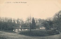 Lille éditeur Au Chiffre Penché Vue 3 Bois De Boulogne état Neuf - Lille