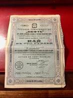 Société   RUSSE   NAPHTE  ---------Action  De  100  Roubles - Russie