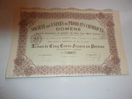 USINES DE PRODUITS CHIMIQUE DE DOMENE (imprimerie RICHARD) Grenoble,isère - Actions & Titres