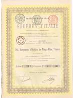 Titre Ancien - Société Nouvelle Des Soufres D'Italie -Titre De 1889 - Mines