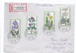 6AK 23759  - Einschreibe Frankatur Von Neustadt - Nach Dresden - [7] West-Duitsland