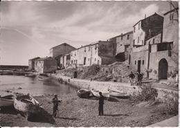 1112... La Corse, île De Beauté - Cap Corse - Port De Centuri - Andere Gemeenten