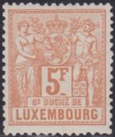 Luxembourg  .   Yvert    .   58      .   *   .    Neuf Avec  Gomme   .   /   .   Ungebraucht Mit Gummi - 1882 Allegorie