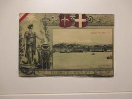 1915 Timbro POSTA MILITARE TRIESTE 1915 Veduta Dal Mare - Militari