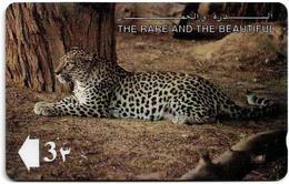 Oman - Arabian Leopard, The Rare And The Beautiful, 13OMNB, 1993, 1.300.000ex, Used - Oman