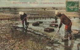Bassin D'ARCACHON  Le Travail Dans Les Parcs Aux Huîtres  1917 Colorée - Arcachon