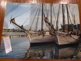 Régates St Malo Bassin Des Yachts Etoile Et Belle Poule - Velieri